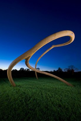 Image of Steve Tobin's 'Untitled (Steelroots)'